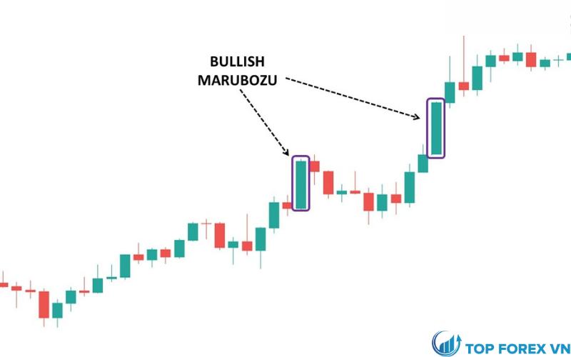 Mô hình Marubozu tăng giá