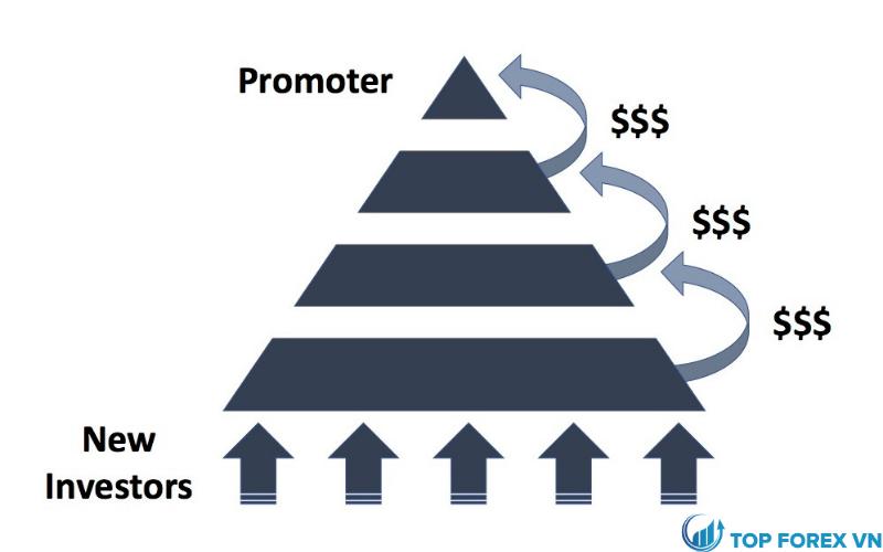 Mô hình kim tự tháp