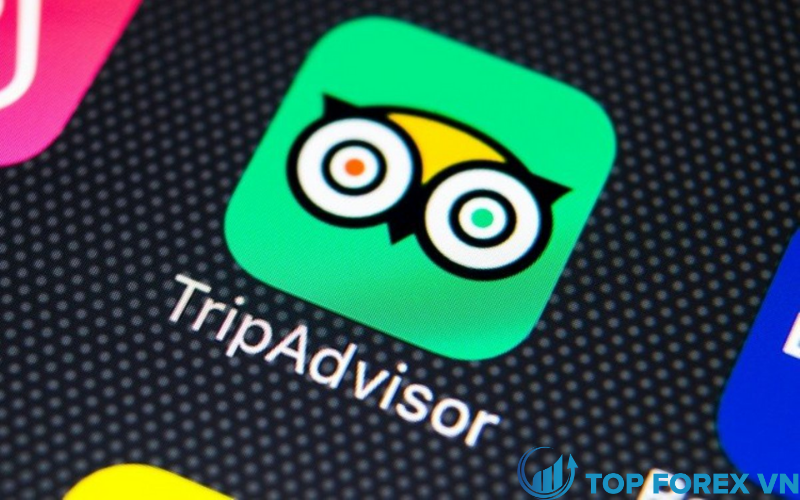 Tripadvisor mất 41 xu chứng khoán trong quý 4