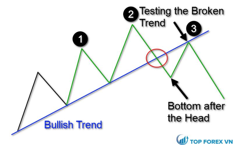 Vẽ mô hình biểu đồ H&S
