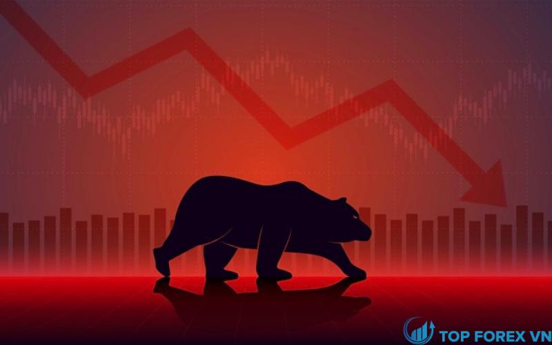 Bear Market là gì