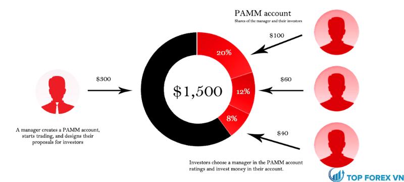 Làm thế nào để chọn một nhà quản lý cho đầu tư quỹ PAMM