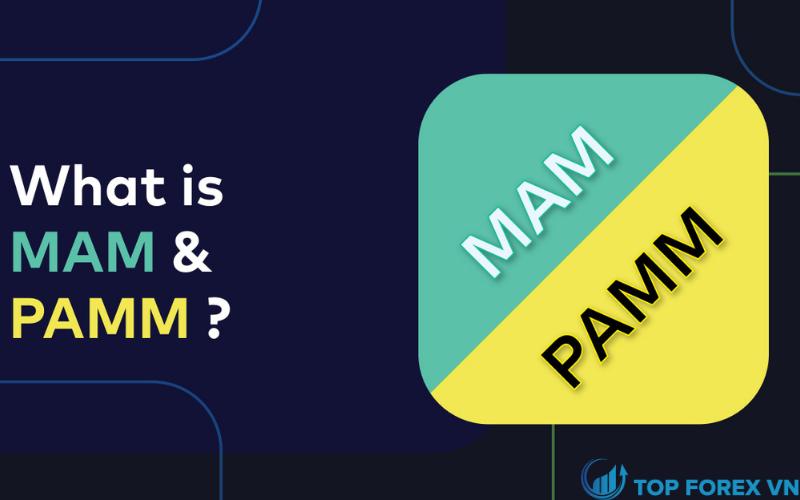 Tài khoản MAM và PAMM
