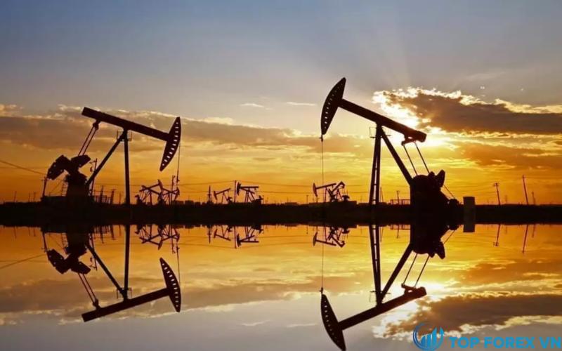 Kho dự trữ dầu thô tại Hoa Kỳ
