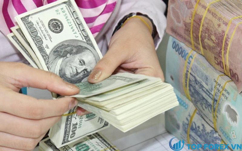 Khủng hoảng tiền tệ ở Việt Nam