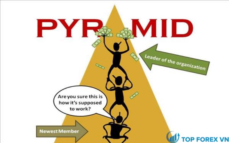 Các dạng của mô hình Pyramid